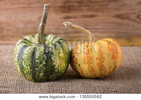 two small decorative pumpkin on jute and wood