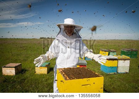 Horizontal photo of a beekeeper in white protection suit standing behind a beehive with arms wide open