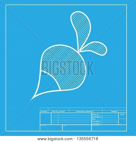 Radish simple sign. White section of icon on blueprint template.