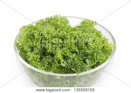 Fresh parsley in a glass bowl on white background