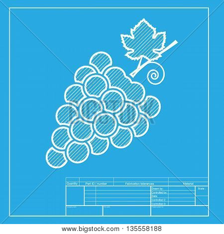 Grapes sign illustration. White section of icon on blueprint template.