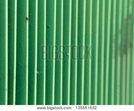 green metal fence. narrow dept of field focuc