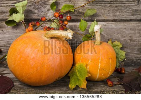 Pumpkins and fall leaves on an old wooden table