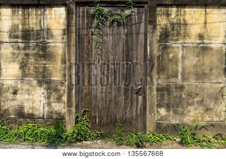 Old wooden door with brick wall texture background and grass.