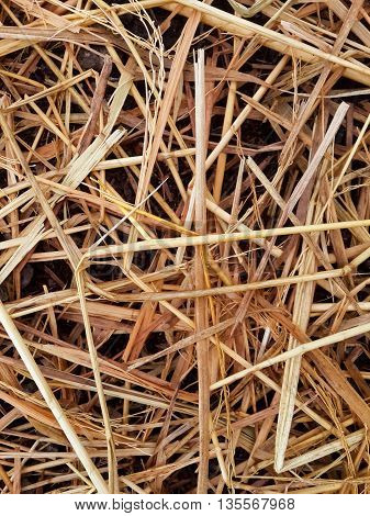 close up dry straw on the ground texture