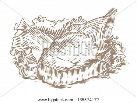 Drawing of fried pork cutlet on the green fresh lettuce