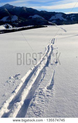 ski trail in winter mountains