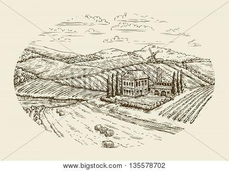 Vineyard landscape. Hand-drawn vintage sketch agriculture, farming, farm