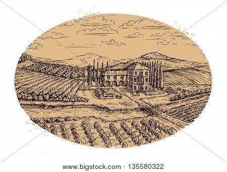 Vineyard landscape. Hand drawn vintage farm agriculture. Vector illustration