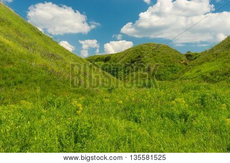 June landscape with blue cloudy sky over ravine overgrown with green herbs in central Ukraine