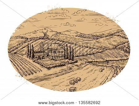 Vineyard landscape. Retro label. Hand-drawn vector vintage farm, agriculture