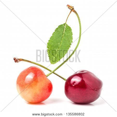 Two cherries with leaf closeup isolated on white background.