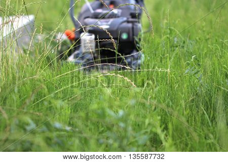 Lawnmower is being used by gardener for mowing grass