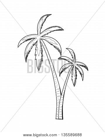 Palm drawing design - modern vector illustration.