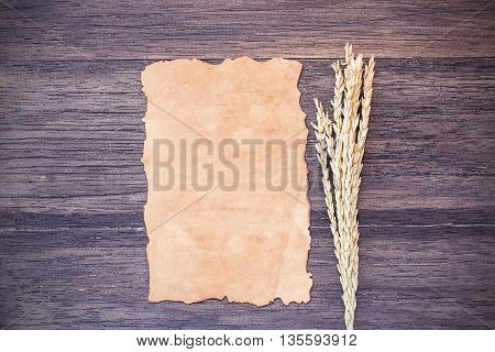 Ears of wheat and old paper on dark wooden table background. top view with copy space