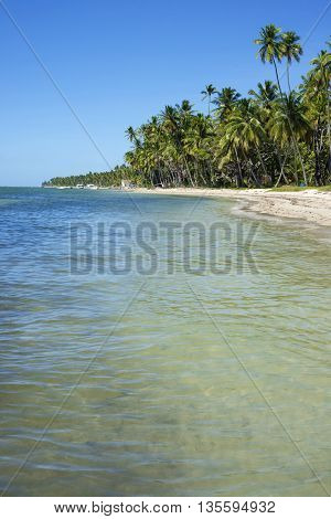 Summer vacation tropical beach landscape with sea water view and palm trees in the background.