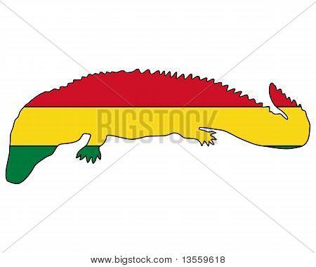 Jacaré Bolívia
