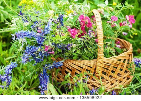 Basket With Wildflowers