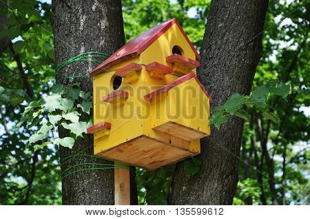 multi-family birdhouse on a tree in the Park