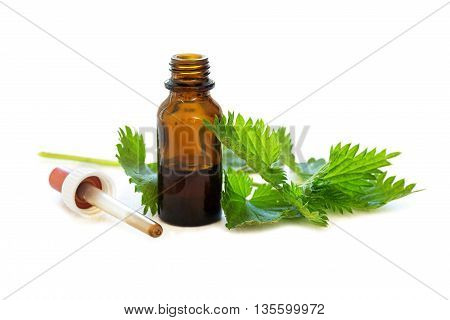 nettle tincture in a small bottle and fresh leaves isolated with shadows on a white background medicinal herb for overweight diabetis and kidney weakness selected focus narrow depth of field