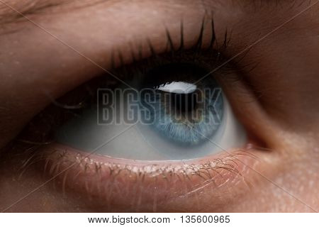 Woman eye blue color with contact lens on it , macro
