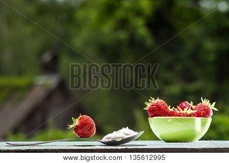 Fresh Strawberry Over Nature Background