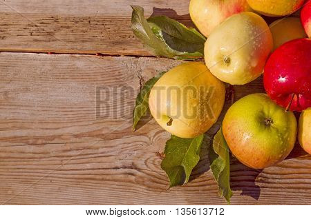 Ripe apples on wooden background.  Juicy  fruits