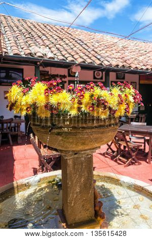 Beautiful Fountain And Flowers