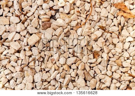 Rock texture for background detail with dry leaves