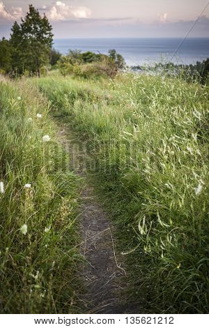 Footpath in grassy meadow along cliffs with view of big body of water. Lake Ontario, Canada.