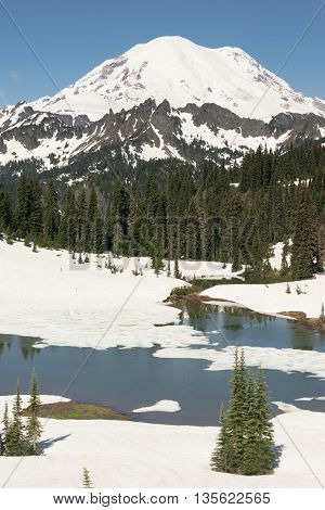 Winter snow holds on into summer at Tipsoo Lake in Mt Rainier National Park