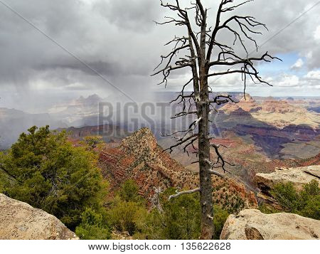 Grand Canyon storm. Arizona, west USA. May 2016