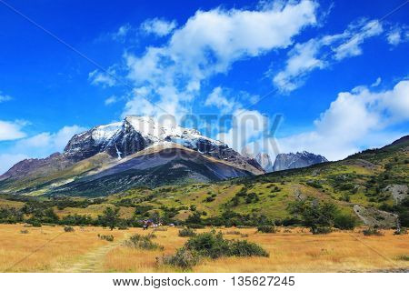 Snow-capped mountains and rocks Torres del Paine. Yellowed autumn field, Patagonia. National Park Torres del Paine