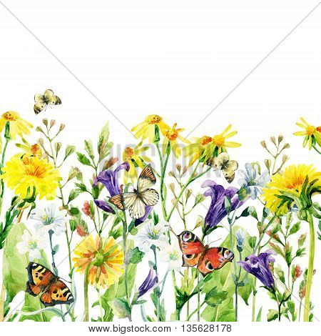 Meadow watercolor flowers card with butterfly. Watercolor wild bellflowers dandelion daisy weeds and herbs background with butterfly. Hand painted natural illustration