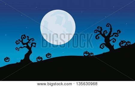 Pumpkins and dry tree Halloween silhouette at night
