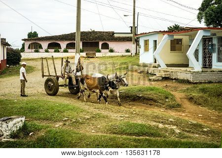 Valle de los Ingenios Trinidad Cuba - January 14 2016: in the village next to Slave Tower Manaca Iznaga which is preserved from Cuba's past when slavery was legal uses the city's residents still oxcarts as the preferred vehicle