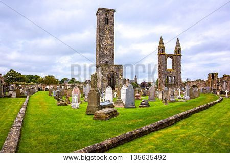 Great Britain Scotland Fife area St Andrews the Cathedral's cemetery