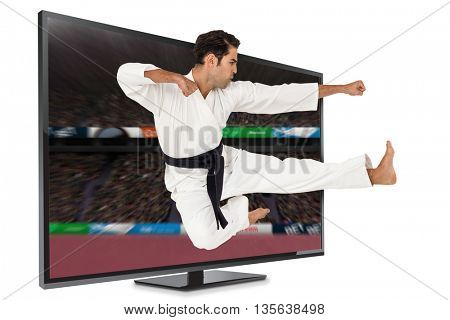 Fighter performing karate stance against view of a stadium