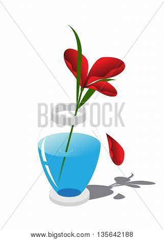 Flower with red petals ,vase with blue water on white background