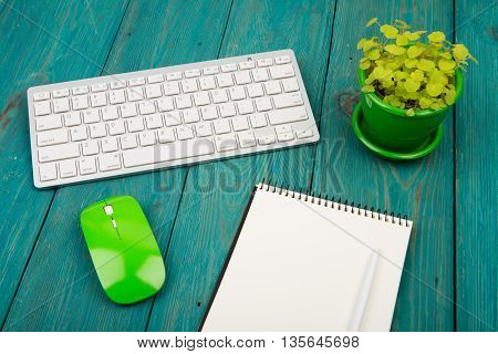Wireless Slim White Keyboard And Green Mouse, Notepad, Flower On Blue Wooden Desk