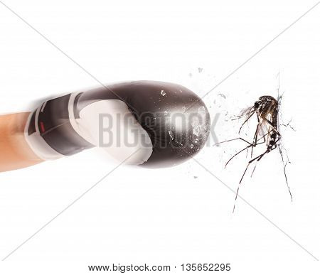 Fist with boxing glove hitting a mosquito