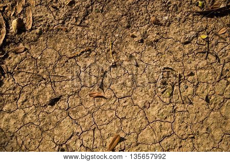 Brown clacked and dry desert soil closeup