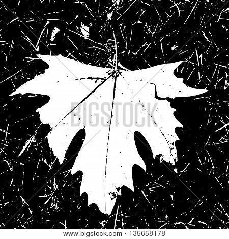 Grunge Maple Leaf Black and white color. Autumn print vector illustration. Imprint grunge art