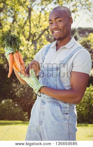 Portrait of young man holding bunch of freshly plucked carrots