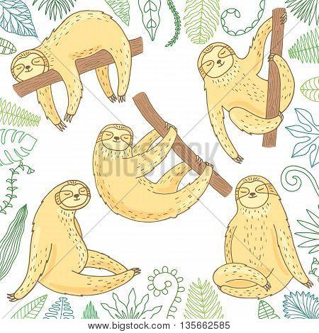 Cute sloth set isolated on white background