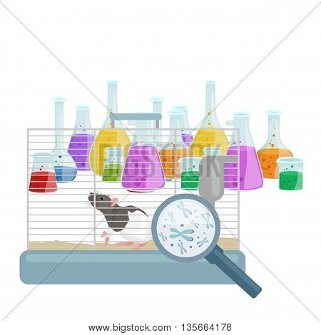 Chemistry education research laboratory equipment, science lab glass tube, vector illustration