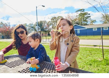 Mother daughter and son family in the park blowing soap bubbles