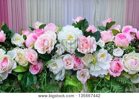 Soft color Roses Background, Roses Background .