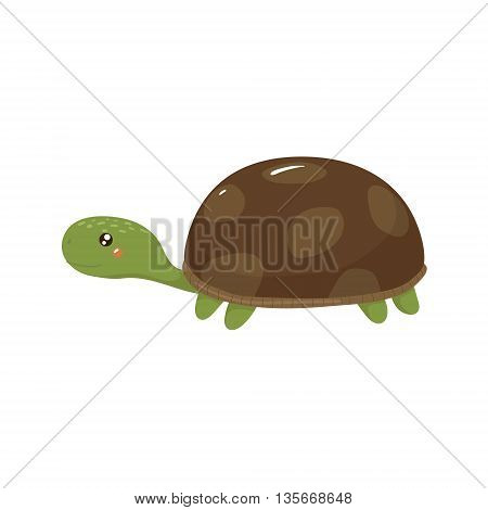 Tortoise Realistic Childish Illustration In Simple Cute Vector Design Isolated On White Background