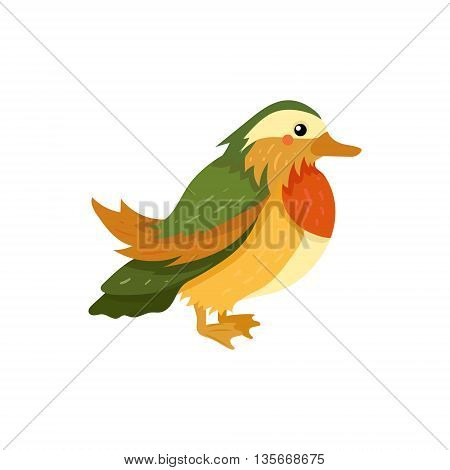 Mandarin Duck Realistic Childish Illustration In Simple Cute Vector Design Isolated On White Background